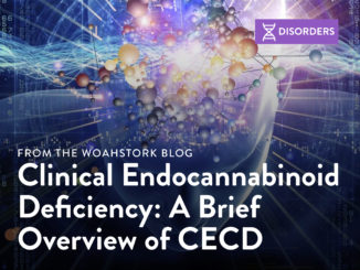 A Brief Overview of CECD