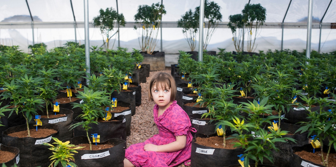 Charlotte Figi is a model medical marijuana epilepsy patient