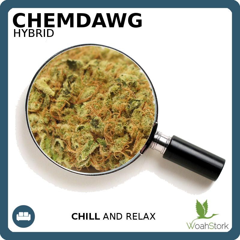 relaxing hybrid strain