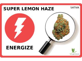 super lemon haze energize