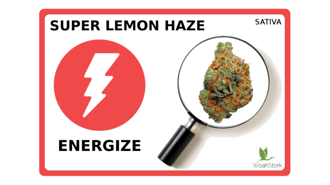 super lemon haze energize