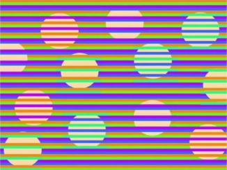 munker illusion woah watch when high