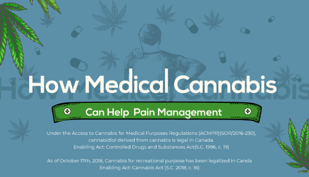 How medical cannabis can hellp pain management infographic 2.jpg