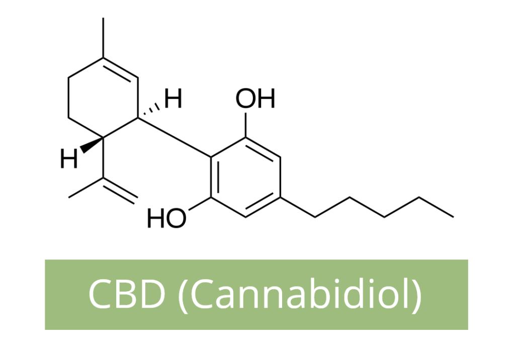 CBD Molecule Homeostasis