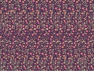 magic eye illusion