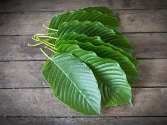 kratom leaves with benefits